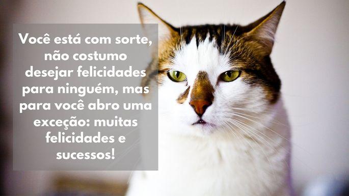 Você está com sorte, não costumo desejar felicidades para ninguém, mas para você abro uma exceção: muitas felicidades e sucessos!