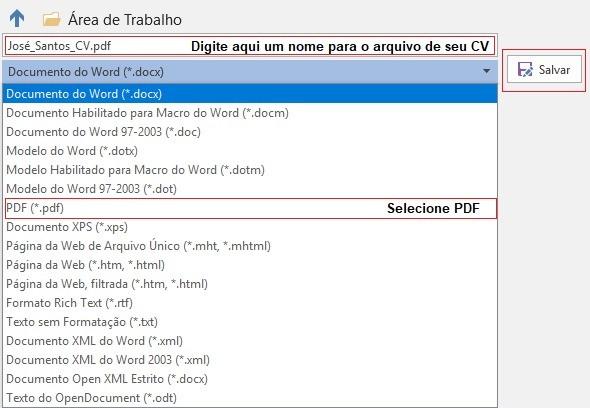 Como Salvar o CV em PDF