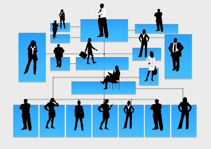 imagem de um organograma